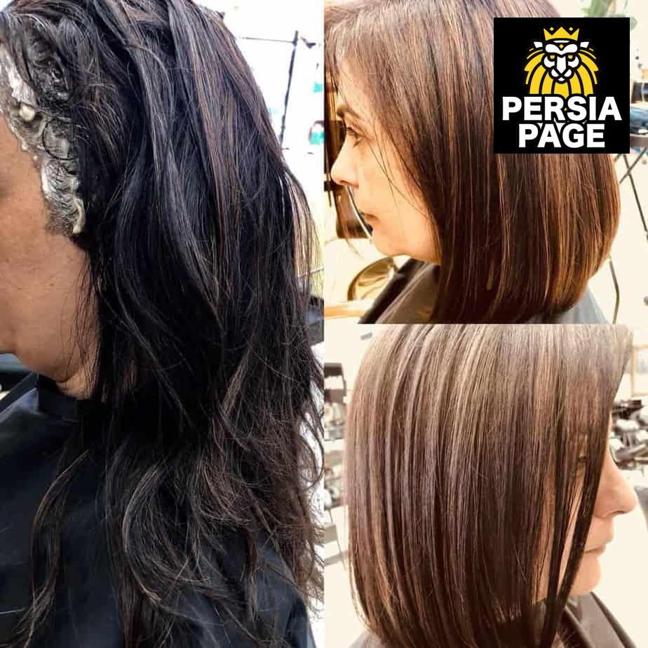 Farah Hair Design Los Angeles Ca Iranian Persian Hair