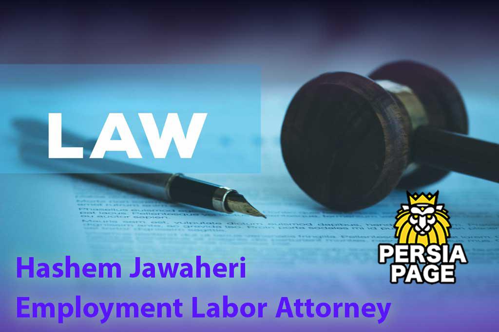 Employment-Labor-Attorney-Amsterdam